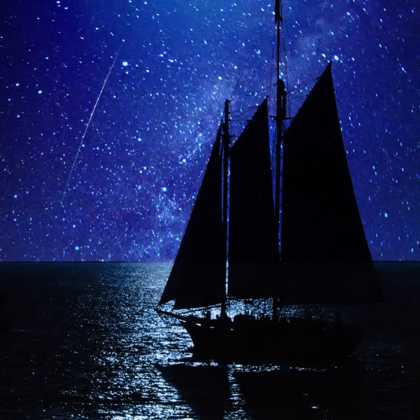 Special Full Moon and Perseid Night Sailings