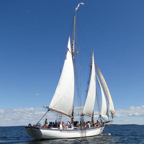 Camden Windjammer Day Sail - Fall