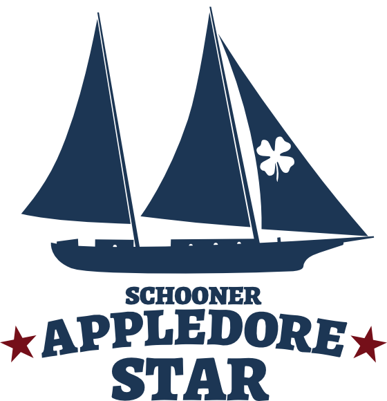 Schooner Appledore Star Drawing