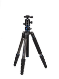 Benro GA269TB2 GoTravel Tripod Kit with B2 Ballhead and Bag by Benro at B&C Camera