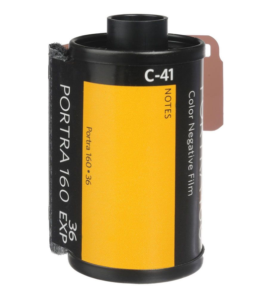 Kodak Professional Portra 160 Color Negative Film (35mm Roll Film, 36 Exposures)