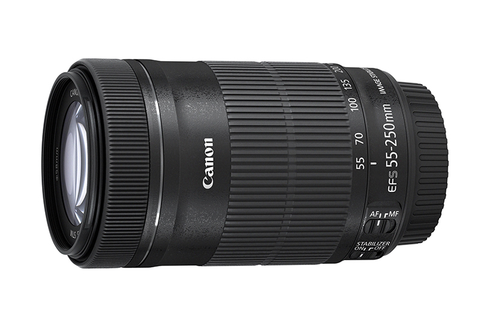 Canon EF-S 55-250mm f/4-5.6 IS STM by Canon at B&C Camera