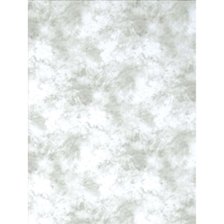 Promaster Cloud Dyed Backdrop 6' x 10' - Light Gray - B&C Camera