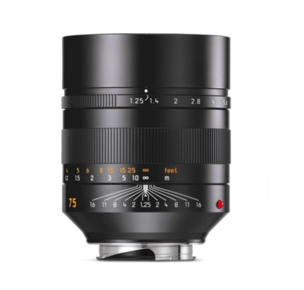 Leica NOCTILUX-M 75 MM F/1.25 ASPH by Leica at B&C Camera