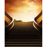 Promaster Scenic Backdrop 8' x 10' - Stairs by Promaster at B&C Camera