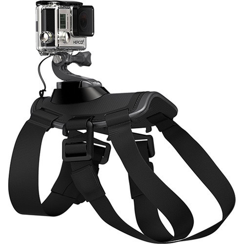 GoPro Fetch Dog Harness by GoPro at B&C Camera