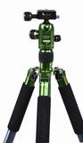 Promaster XC525 Professional Tripod with Head (Green) by Promaster at B&C Camera