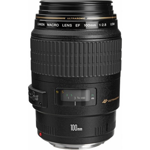 Canon EF 100mm f/2.8 Macro USM by Canon at B&C Camera
