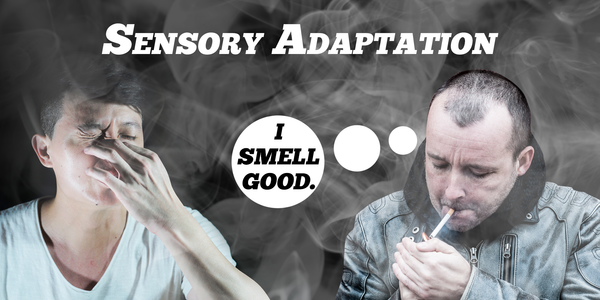 What causes vaper's tongue? Sensory Adaptation