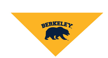 U.C. Berkeley Cal Pet Bandanna-Gold