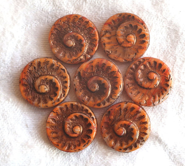 Six large Czech glass snail fossil beads, 18mm opaque orange wash on white with bronze accents, earthy, rustic coin / disc focal beads C0616