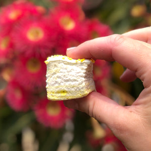 Handmade Lemon Myrtle Marshmallows
