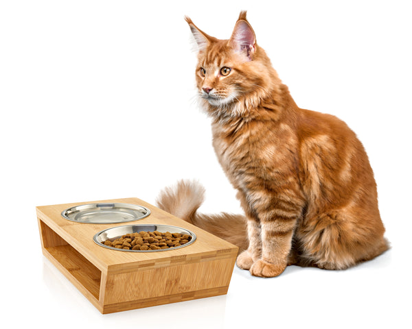 "Premium 4"" Elevated Pet Feeder for Small Dogs and Cats"