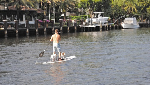 Inflatable Paddle Board Pic, Water Sports