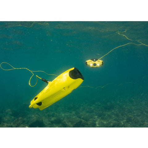 Chasing Dory Underwater Drone