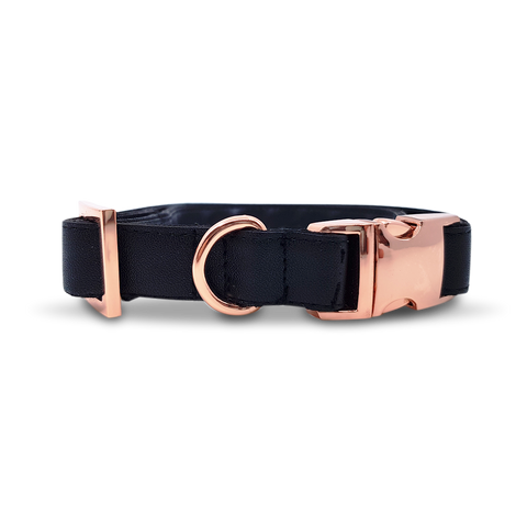 6FIVE Dog Collar in Black