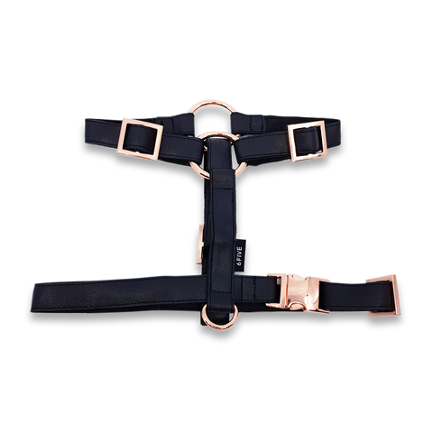 6FIVE Harness in Black