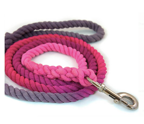 Pampurred Pets Blossom Leash