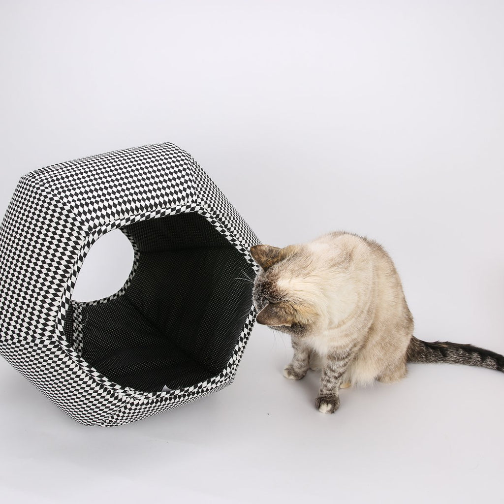 The Cat Ball in Black & White Harlequin