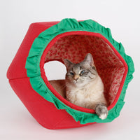 The Cat Ball in Strawberry