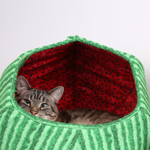 Load image into Gallery viewer, The Cat Ball in Watermelon