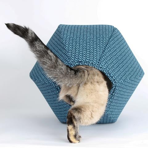 The Cat Ball in Teal Caret
