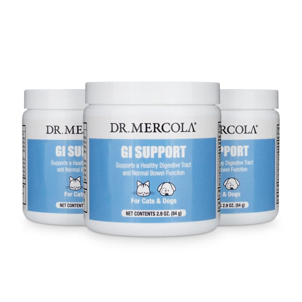 Dr Mercola GI Support for Cats & Dogs