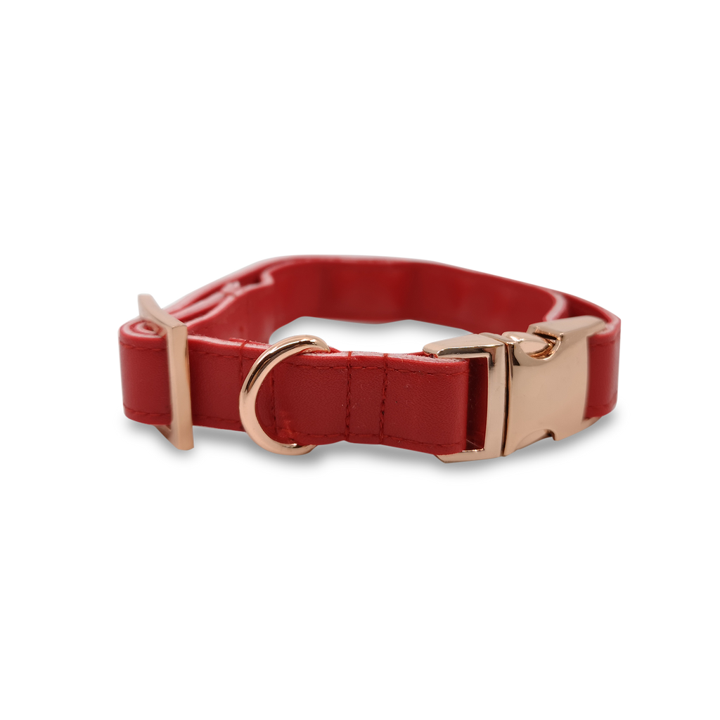 6FIVE Dog Collar in Red