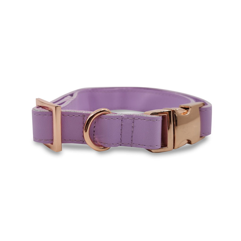 6FIVE Dog Collar in Lilac