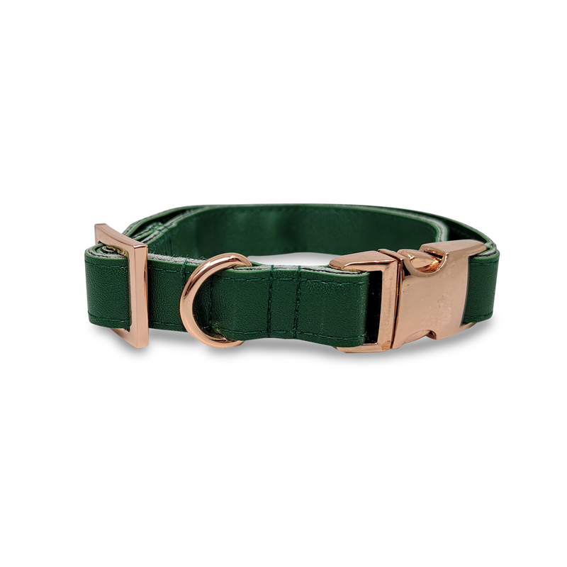 6FIVE Dog Collar in Olive