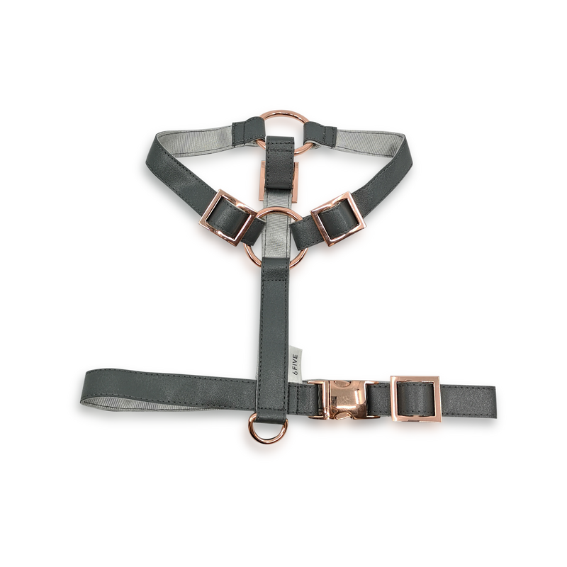 6FIVE Harness in Slate