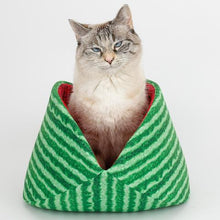 Load image into Gallery viewer, The Jumbo Cat Canoe in Watermelon