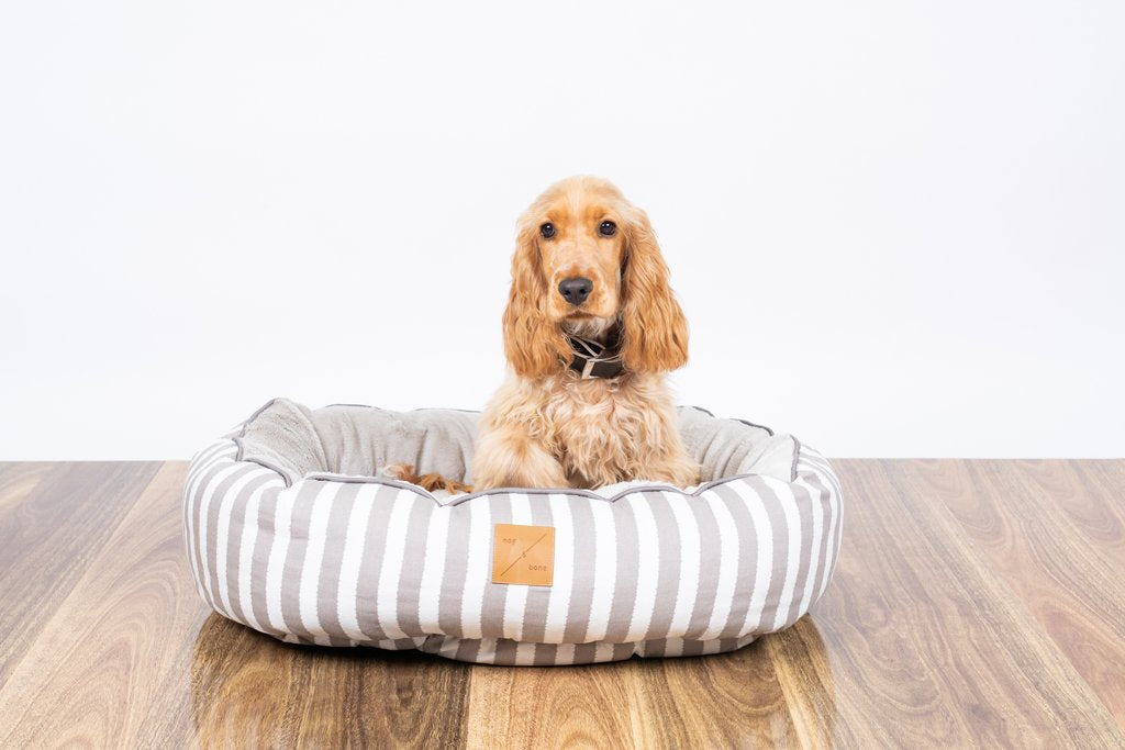 Mog & Bone Reversible Bed - Latte Hamptons Stripe Print