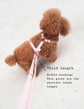 Load image into Gallery viewer, 6FIVE Leash in Blush