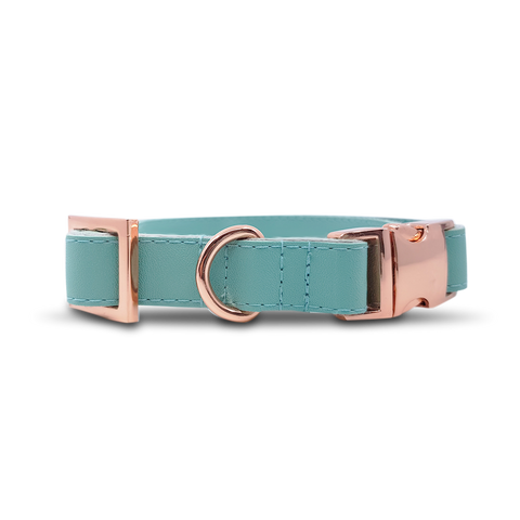 6FIVE Dog Collar in Mint