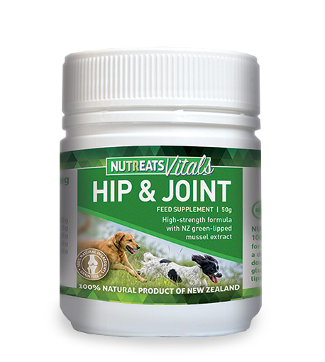 Nutreats Hip & Joint Supplement for Dogs