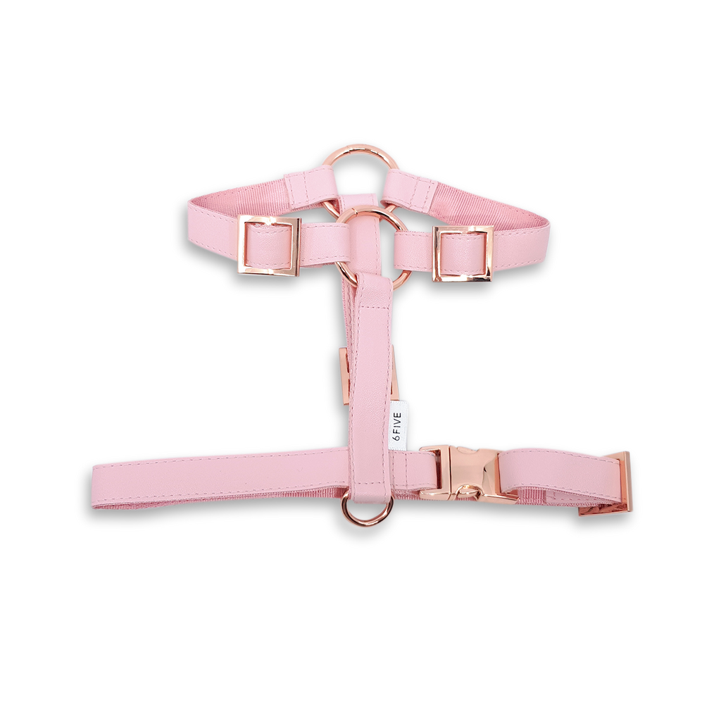 6FIVE Harness in Blush