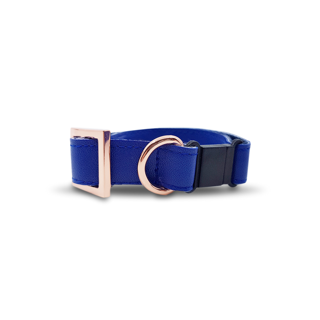 6FIVE Cat Collar in Royal