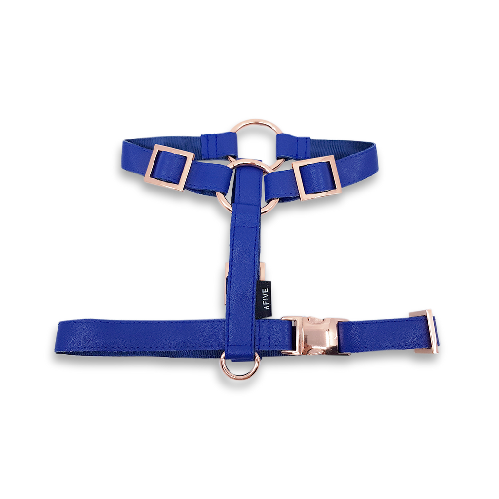 6FIVE Harness in Royal