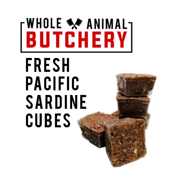 Whole Animal Butchery Frozen Sardine Cubes