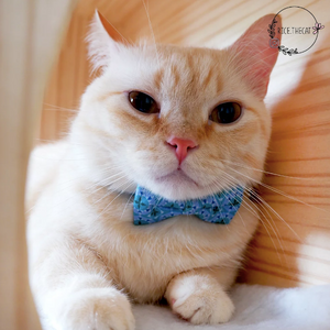 Bowtix Cat Collar with Bowtie - Diamond Prism