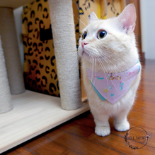Load image into Gallery viewer, Bowtix Cat Collar with Bandana - Summer Lories (Pink)