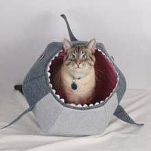 Load image into Gallery viewer, The Cat Ball in Great White Shark