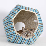 The Cat Ball in Blue Stripes