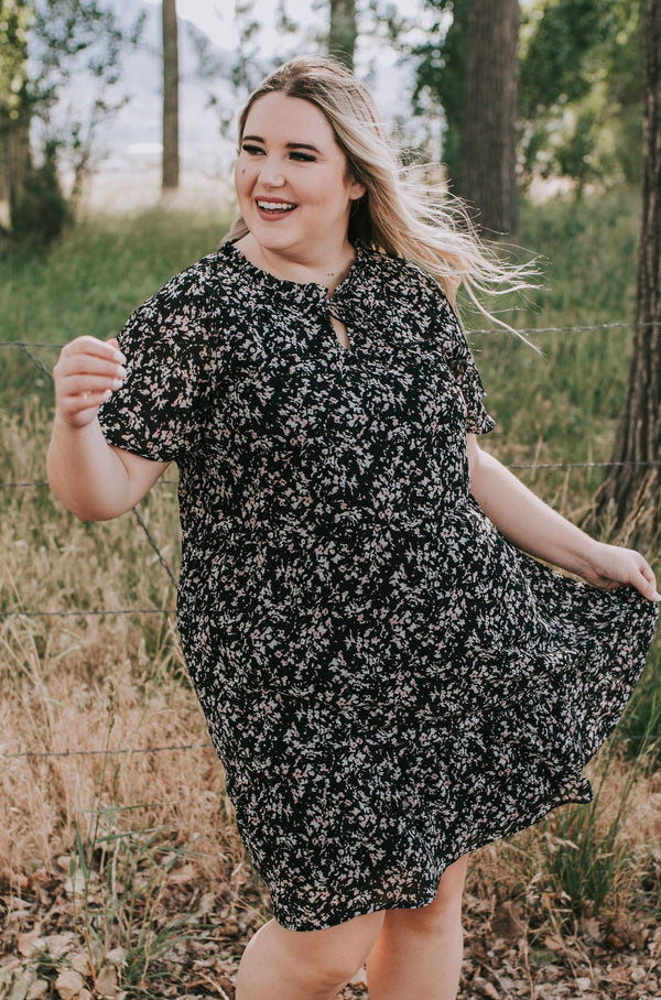 PLUS SIZE - Dreamland Dress - 2 Colors