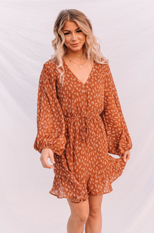 Warm Cider Dress - 2 Colors