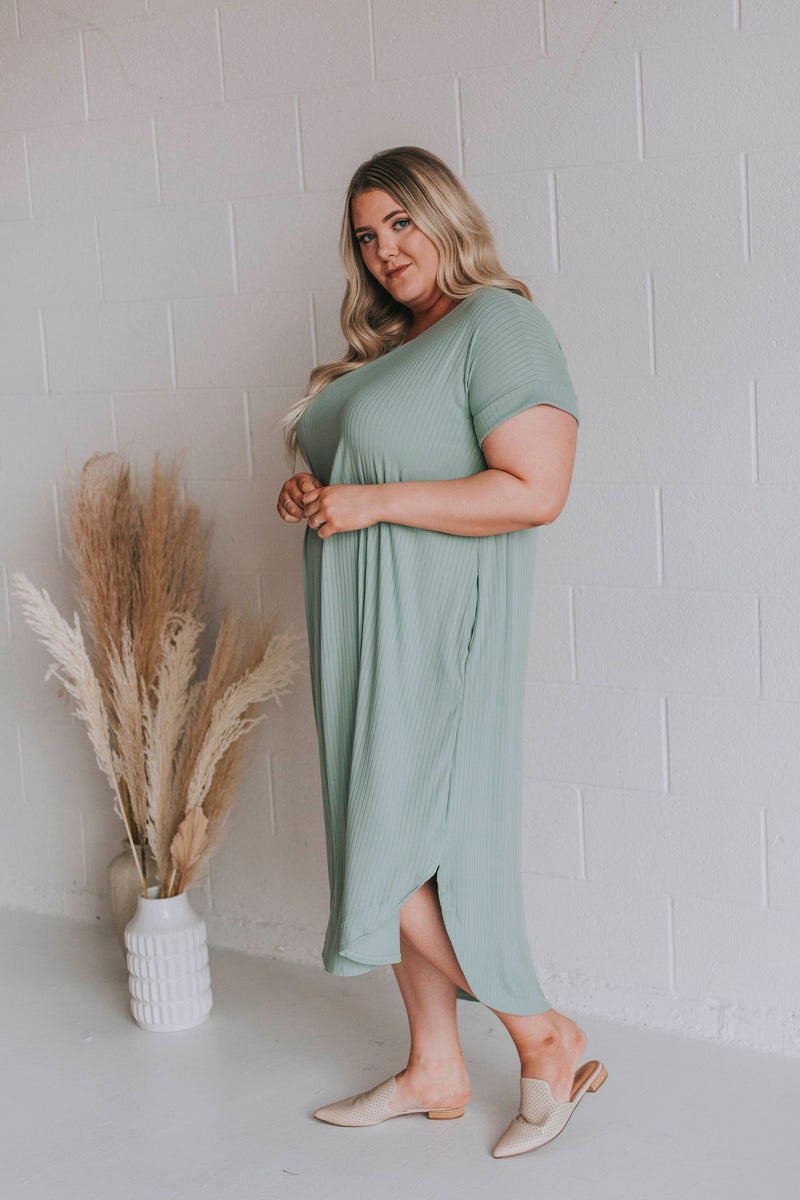 PLUS SIZE - Beautiful Day Dress - 2 Colors