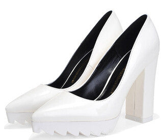 Pointed Toe Thick Heels Shoes