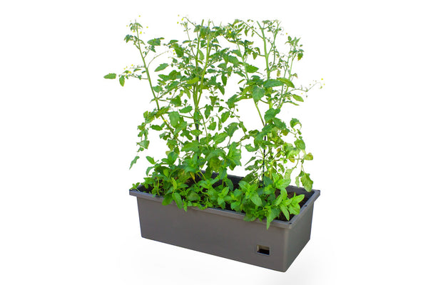 Greenlife Mobile Planter Box with Greenhouse
