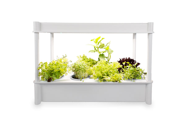 Greenlife Self-Watering Salad Grower with LED Lights and 8 Pots - White